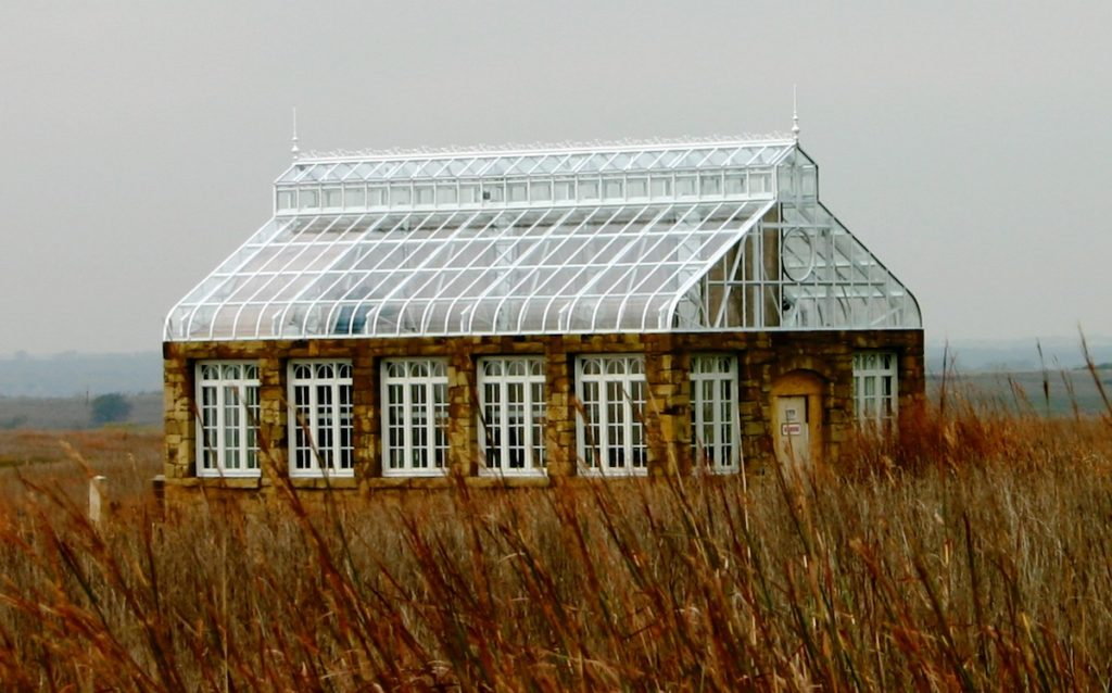 Greenhouse in a field